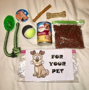 Pet Kit Example 2